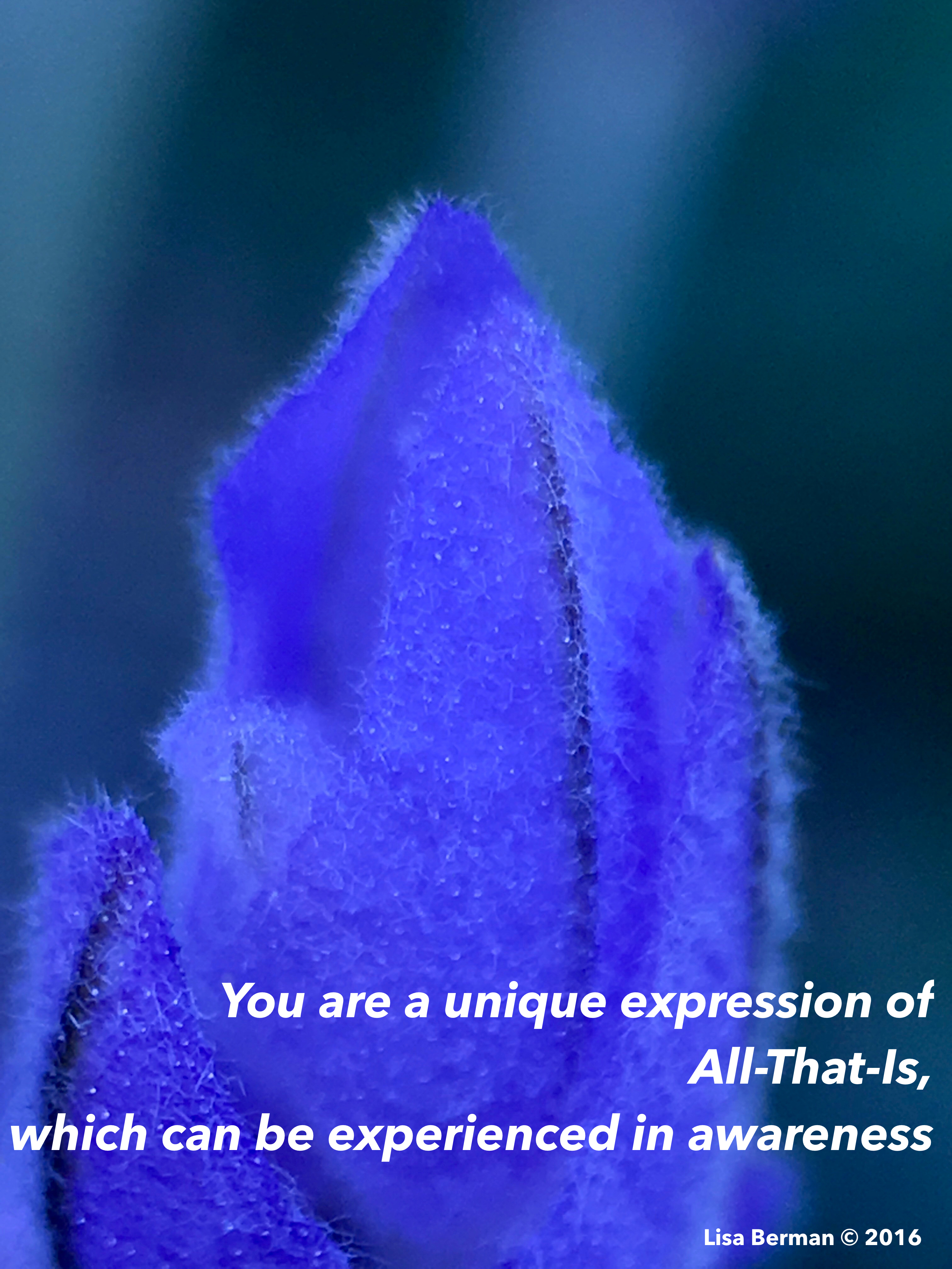 You are a unique expression of All-That-Is, which can be experienced in awareness